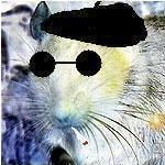 Profile picture of Cyber Rat